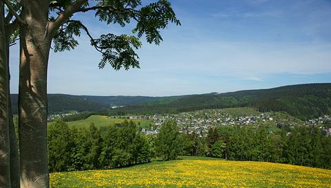 The hiking trail Kammweg